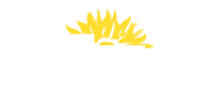müller+co Logo